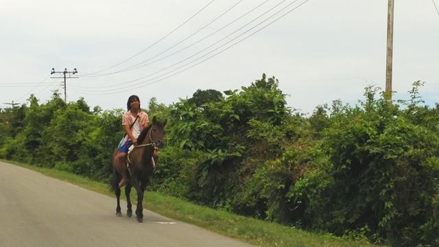 骑马其实并非很常见。